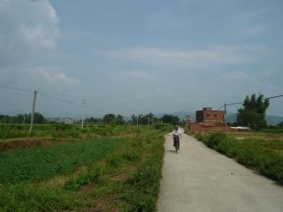 yangchun-001
